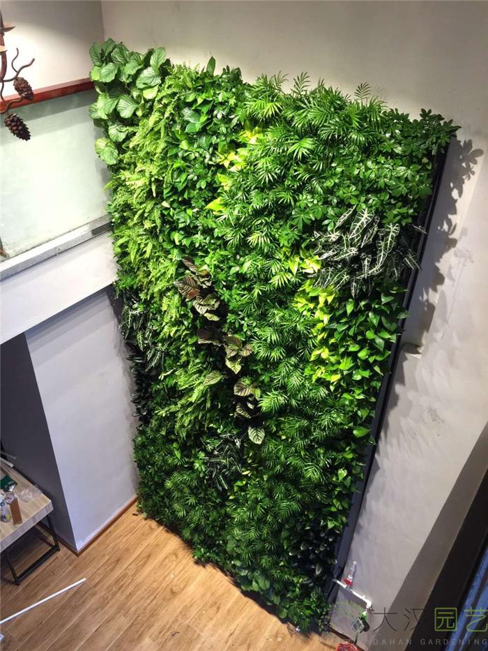 室内精品立体绿化